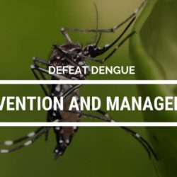 Dengue Prevention And Management Awareness
