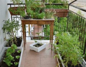 apartment-garden-1