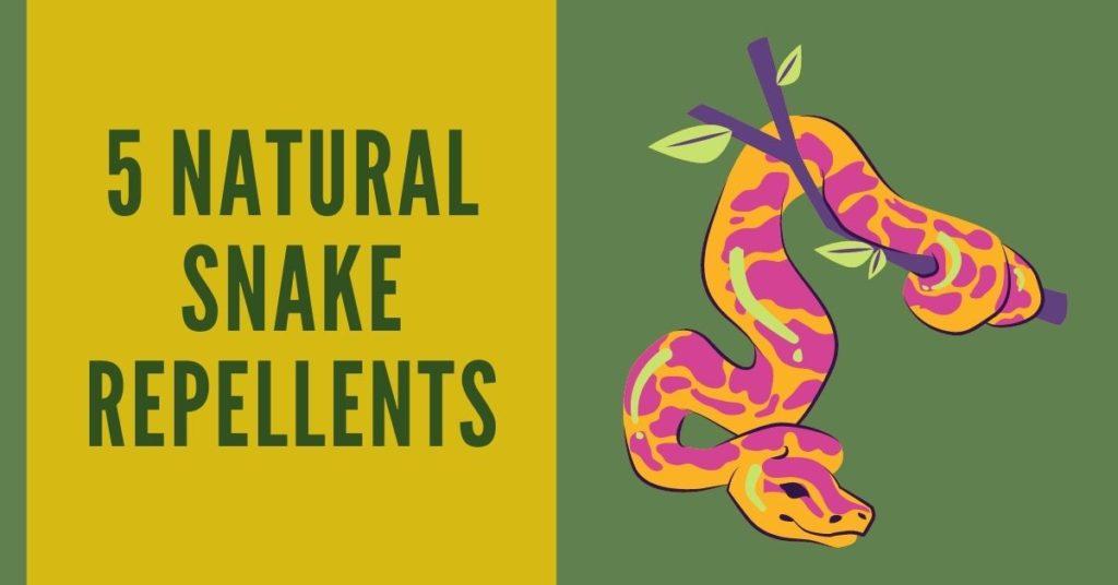 natural snake repellents